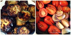 Tomatoes and Eggplants
