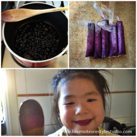 Blueberry Ice Candy
